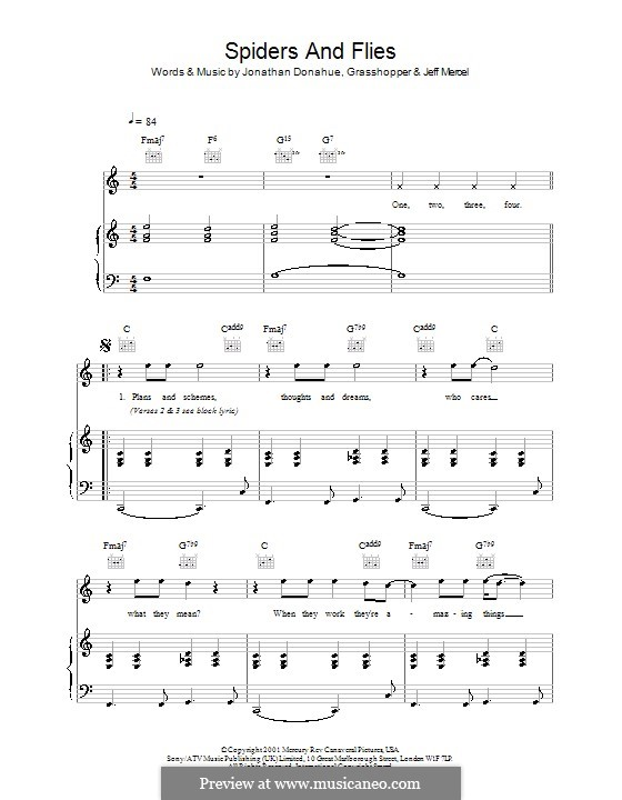 Spiders and Flies (Mercury Rev): Para vocais e piano (ou Guitarra) by Jonathan Donahue