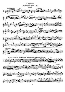 Thirty Studies for Flute Solo, Op.107: Thirty Studies for Flute Solo by Sigfrid Karg-Elert