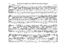 Choral Prelude 'Befiehl du deine Wege': Choral Prelude 'Befiehl du deine Wege' by Samuel de Lange Sr.
