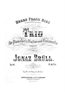 Piano Trio, Op.14: Trio de piano by Ignaz Brüll