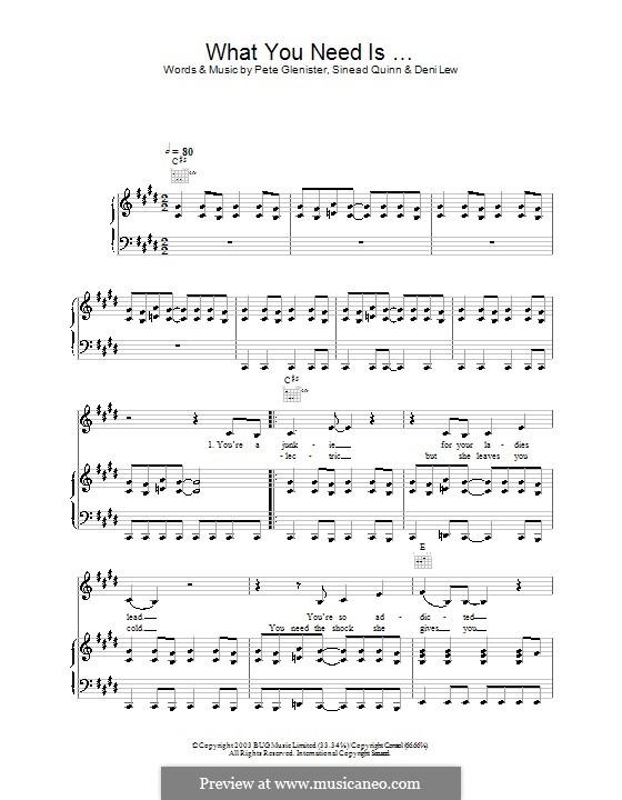 What You Need Is ...: Para vocais e piano (ou Guitarra) by Deni Lew, Pete Glenister