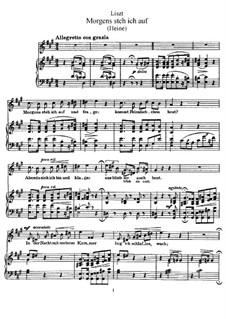 Morgens Steh ich Auf und Frage, S.290: Version I by Франц Лист