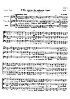Hier strecket der wallende Pilger (Here Lies the Pilgrim), D.57: Hier strecket der wallende Pilger (Here Lies the Pilgrim) by Франц Шуберт