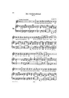 Романсы и баллады, Op.64: Сборник by Роберт Шуман