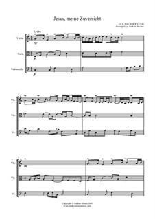 Jesus, meine Zuversicht, arranged for String Trio, BWV 728: Jesus, meine Zuversicht, arranged for String Trio by Иоганн Себастьян Бах
