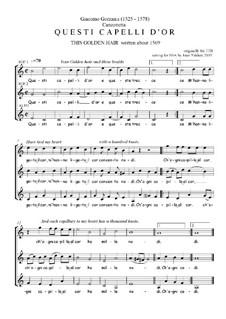 Questi Capelli d'or - canzonetta: Questi Capelli d'or - canzonetta by Giacomo Gorzanis