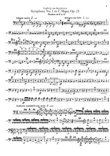 Вся симфония: Партия литавр by Людвиг ван Бетховен