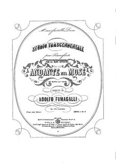 Трансцендентные этюды, Op.102: Для фортепиано by Адольфо Фумагалли