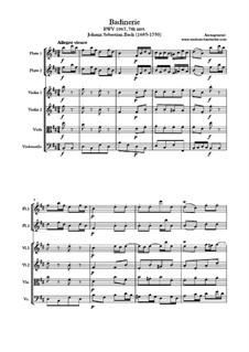 Сюита для оркестра No.2 си минор, BWV 1067: Шутка, для салонного оркестра by Иоганн Себастьян Бах