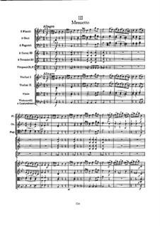 Симфония No.102 си-бемоль мажор, Hob.I/102: Часть III by Йозеф Гайдн