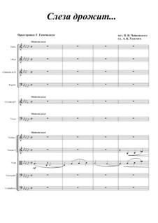 Шесть романсов, TH 93 Op.6: No.4 Слеза дрожит, для голоса и оркестра by Петр Чайковский