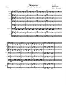 Концерт для скрипки с оркестром No.2 соль минор 'Лето', RV 315: Movement I, for school string orchestra – score by Антонио Вивальди
