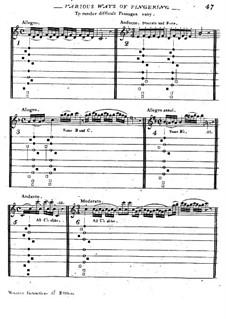 Школа игры на немецкой флейте: Часть III by Тебальдо Монцани