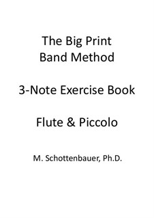 3-Note Exercise Book: Flute and flute piccolo by Michele Schottenbauer