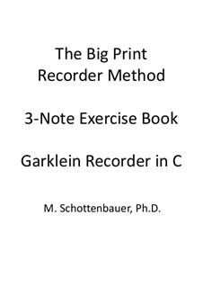3-Note Exercise Book: Garklein recorder by Michele Schottenbauer