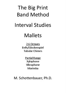 Interval Studies: Mallets by Michele Schottenbauer