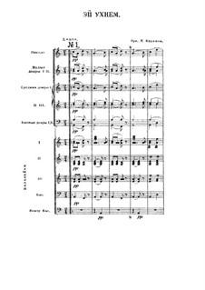 Эй, ухнем: Для камерного оркестра by folklore
