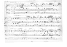 Четыре пьесы для органа: No.1 Аллегретто by Жак Николя Лемменс