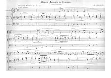 Четыре пьесы для органа: No.4 Большая фантазия ми минор 'Буря' by Жак Николя Лемменс