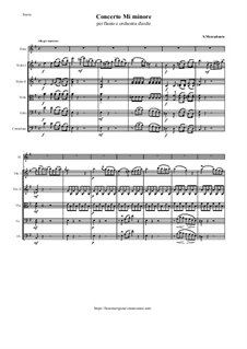 Concerto for Flute and String Orchestra in E Minor: Concerto for Flute and String Orchestra in E Minor by Саверио Меркаданте