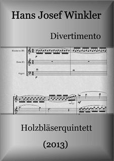 Divertimento (2013) for woodwindquintet: Divertimento (2013) for woodwindquintet by Hans Josef Winkler