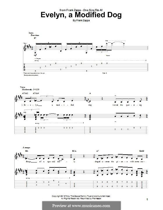 Evelyn, a Modified Dog: Для гитары с табулатурой by Frank Zappa