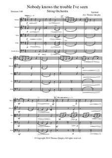 Nobody Knows the Trouble I've Seen: Для струнного оркестра by folklore