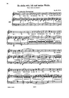 Девять песен, Op.32: No.8 So stehn wir, ich und meine Weide (So We Stand, I and My Pasture) by Иоганнес Брамс