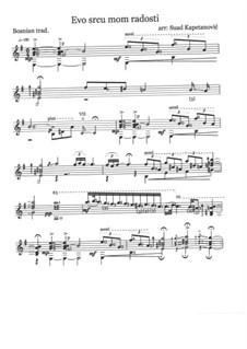 Evo srcu mom radosti (Classical Guitar): Evo srcu mom radosti (Classical Guitar) by folklore