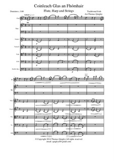 Coinleach Glas an Fhomhair: For large ensemble (flute, harp and strings) by folklore