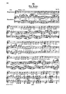 Роза, D.745 Op.73: Для высокого голоса и фортепиано by Франц Шуберт