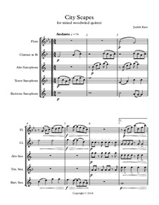 City Scapes - for mixed woodwind quintet: Партитура by Judith Katz
