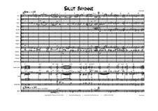Salut Bayonne - Latin/Samba - Big band: Salut Bayonne - Latin/Samba - Big band by Thomas Hans Graf