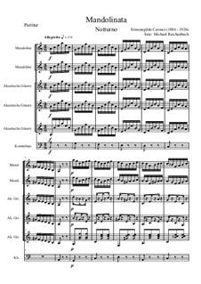 Mandolinata: Mandolinata by Эрменегильдо Карозио