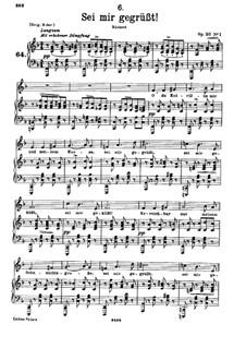 Sei mir gegrüsst (I Greet You), D.741 Op.20 No.1: Для низкого голоса и фортепиано by Франц Шуберт