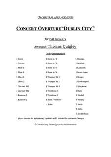 Concert Overture (Dublin City): Concert Overture (Dublin City) by folklore