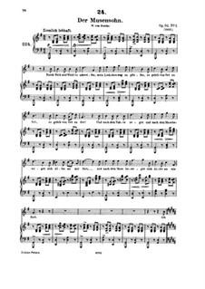 Песни для голоса и фортепиано: Том IV, часть II by Франц Шуберт