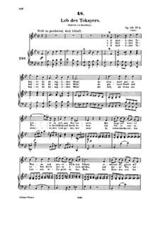 Песни для голоса и фортепиано: Том IV, часть III by Франц Шуберт