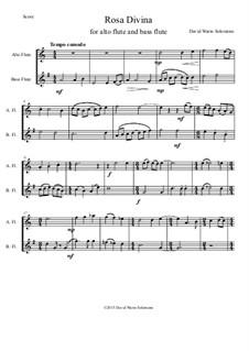 Rosa Divina: For alto flute and bass flute by Дэвид Соломонс