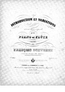 Интродукция и вариации на тему 'Trockne Blumen', D.802 Op.160: Партитура by Франц Шуберт