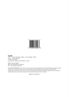 Sonata per Cembalo in G Minor, Hr 100: Sonata per Cembalo in G Minor by Antonino Reggio