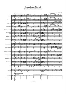 Symphony No.28 (for winds, brass and percussion): Symphony No.28 (for winds, brass and percussion) by Jordan Grigg