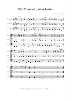 Die Blümelein, sie schlafen - Trio für Violinen oder andere Melodieinstrumente: Die Blümelein, sie schlafen - Trio für Violinen oder andere Melodieinstrumente, Op.01039 by folklore