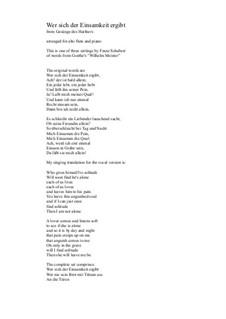 Harfenspieler I (The Harper's Song I), D.478 Op.12 No.1: No.1 Wer sich der Einsamkeit ergibt, for alto flute and piano by Франц Шуберт