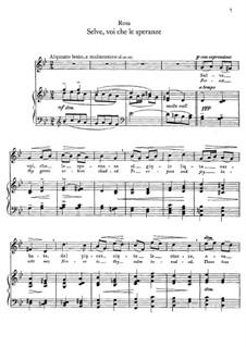 Selve, voi che le speranze: Для голоса и фортепиано by Сальватор Роза