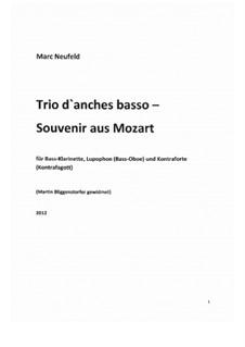 Extended melodies: 'Trio d'anches basso – Souvenir aus Mozart' für Bass-Klarinette, Lupophon und Kontraforte (2012): Extended melodies: 'Trio d'anches basso – Souvenir aus Mozart' für Bass-Klarinette, Lupophon und Kontraforte (2012) by Marc Neufeld