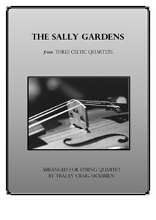Down By the Sally Gardens: Для струнного квартета by folklore