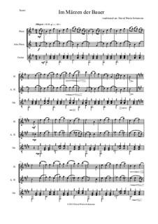 Пять немецких народных песен: Im Märzen der Bauer, for flute, alto flute and guitar by folklore