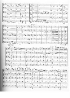 Струнный квинтет до мажор, D.956 Op.163: Часть IV by Франц Шуберт