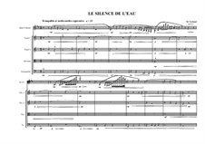 Silence for Bass clarinet and Stringquartet, MVWV 1042: Silence for Bass clarinet and Stringquartet by Maurice Verheul